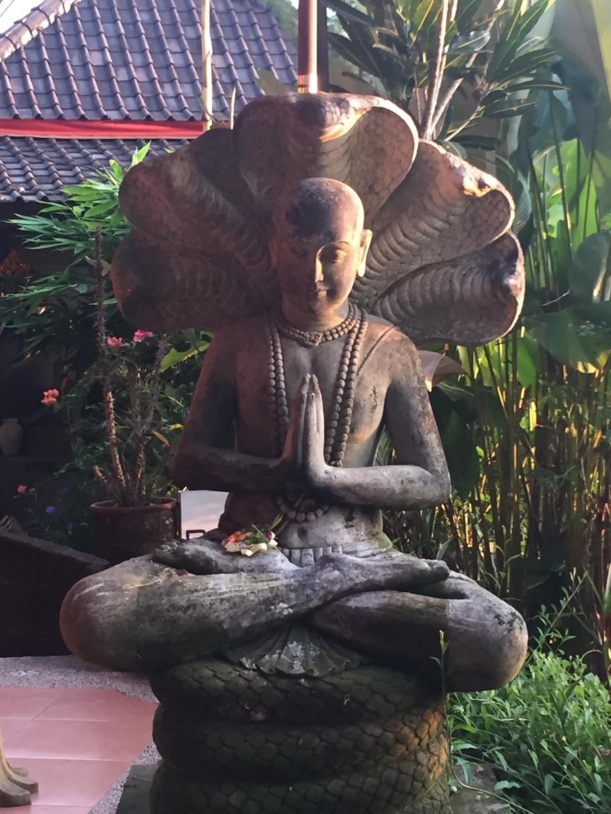 Mindfulness Meditation Course -