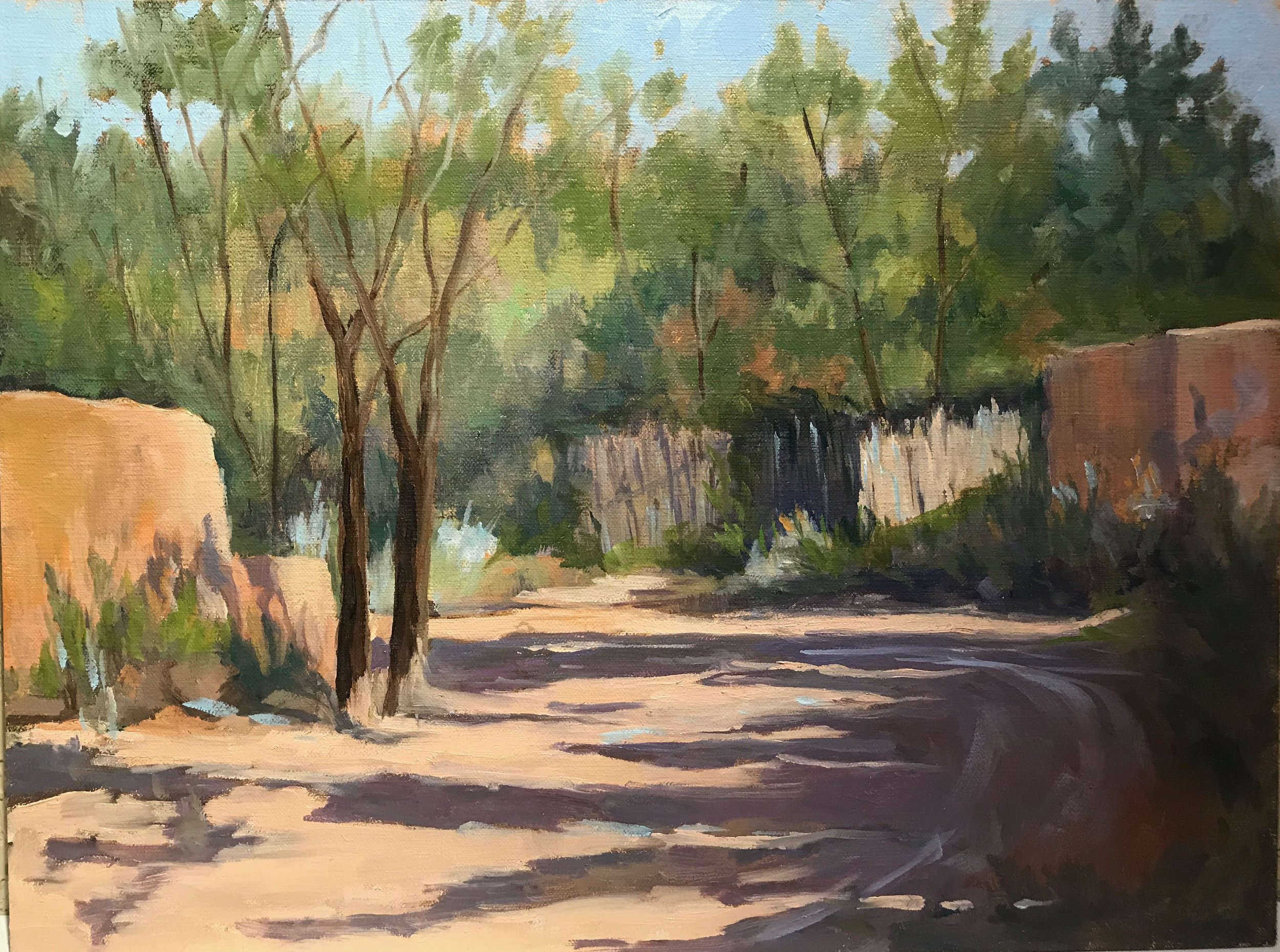 Adobe and Coyote Fences