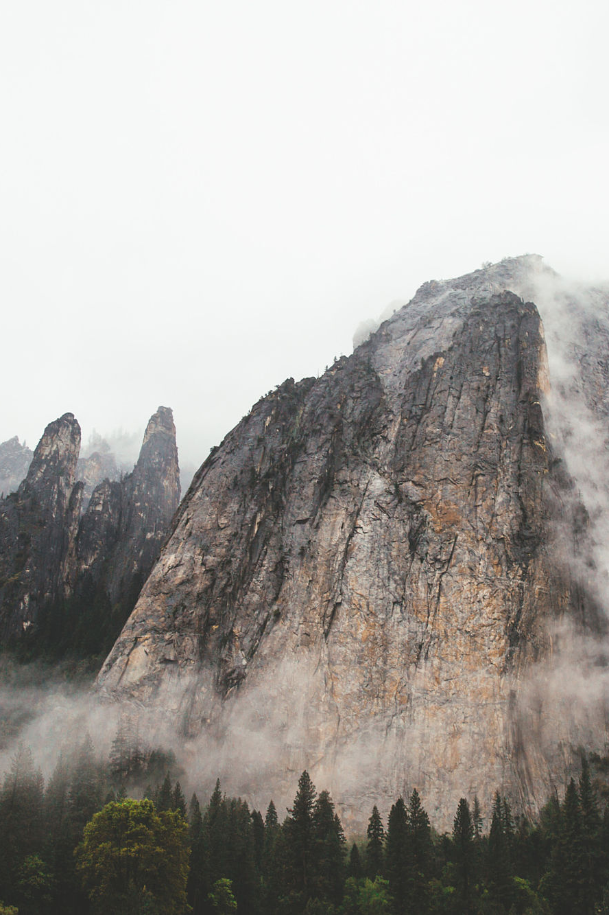 earth-dream :      The Cathedral
