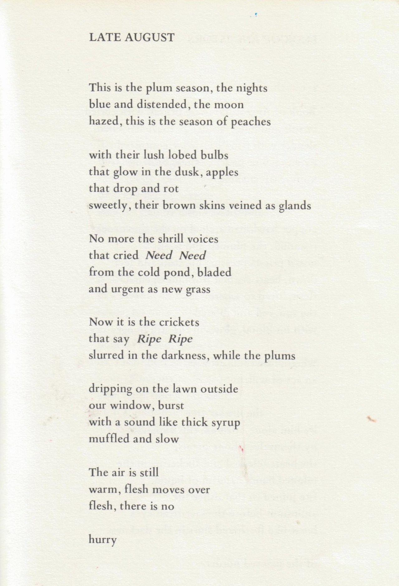 rebeccaartemisa :      Late August , by Margaret Atwood