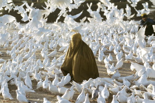 Pigeon feeding near Blue Mosque,  1991,   Steve McCurry