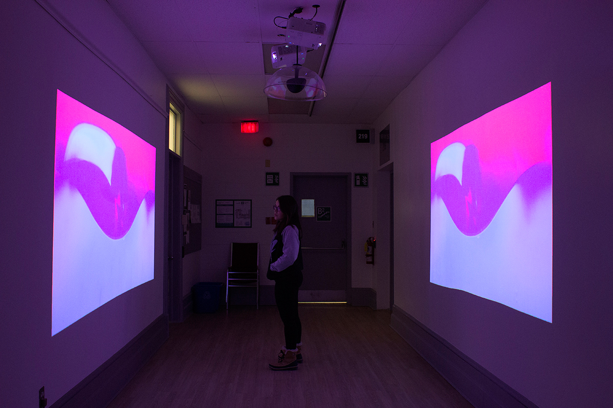 Christine Miller,  Abstract Space II , 2016, 2 approximately 5'X7' projections Video Installation