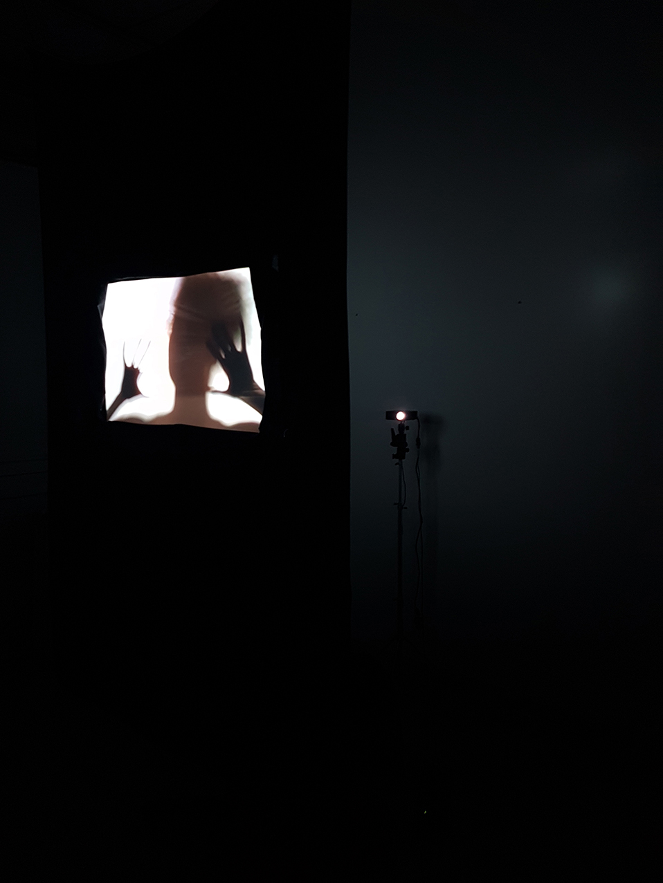 Rebecca Bair,  We are not who we are Oppressed to be,  (Video Still), Video Projection, 2016