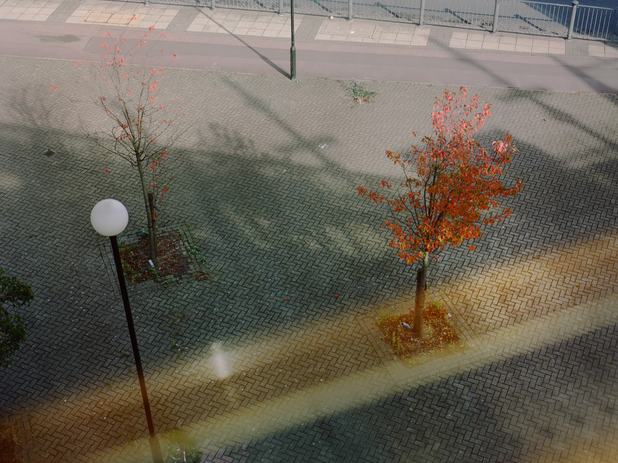 DLR.jpg