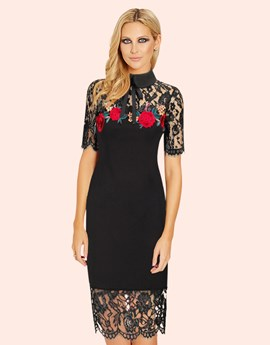 office-fashion-blog-embroidered-dress-1