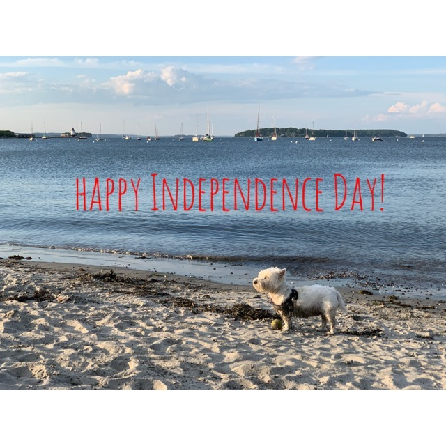 We wish you all a Happy Fourth of July! We will be playing in the sand today but we will re-open tomorrow. Have a wonderful weekend!