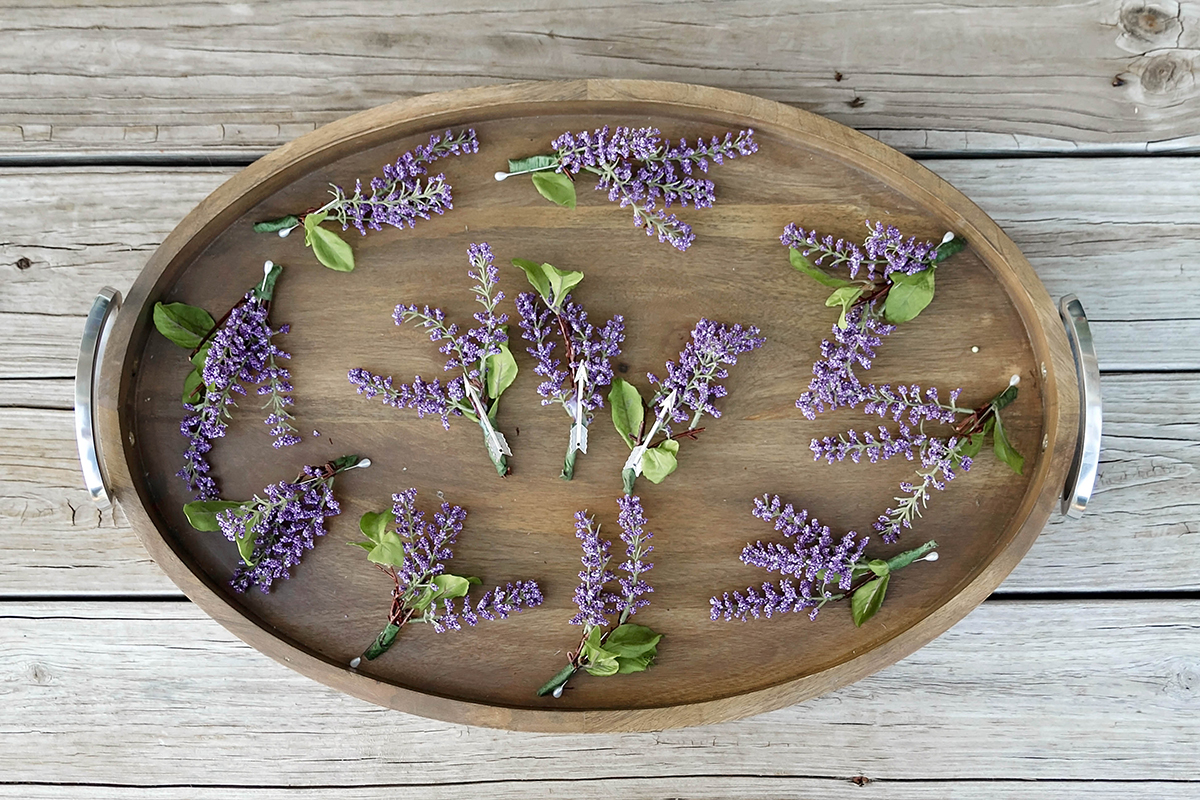 a tray full of lavender boutineers.jpg
