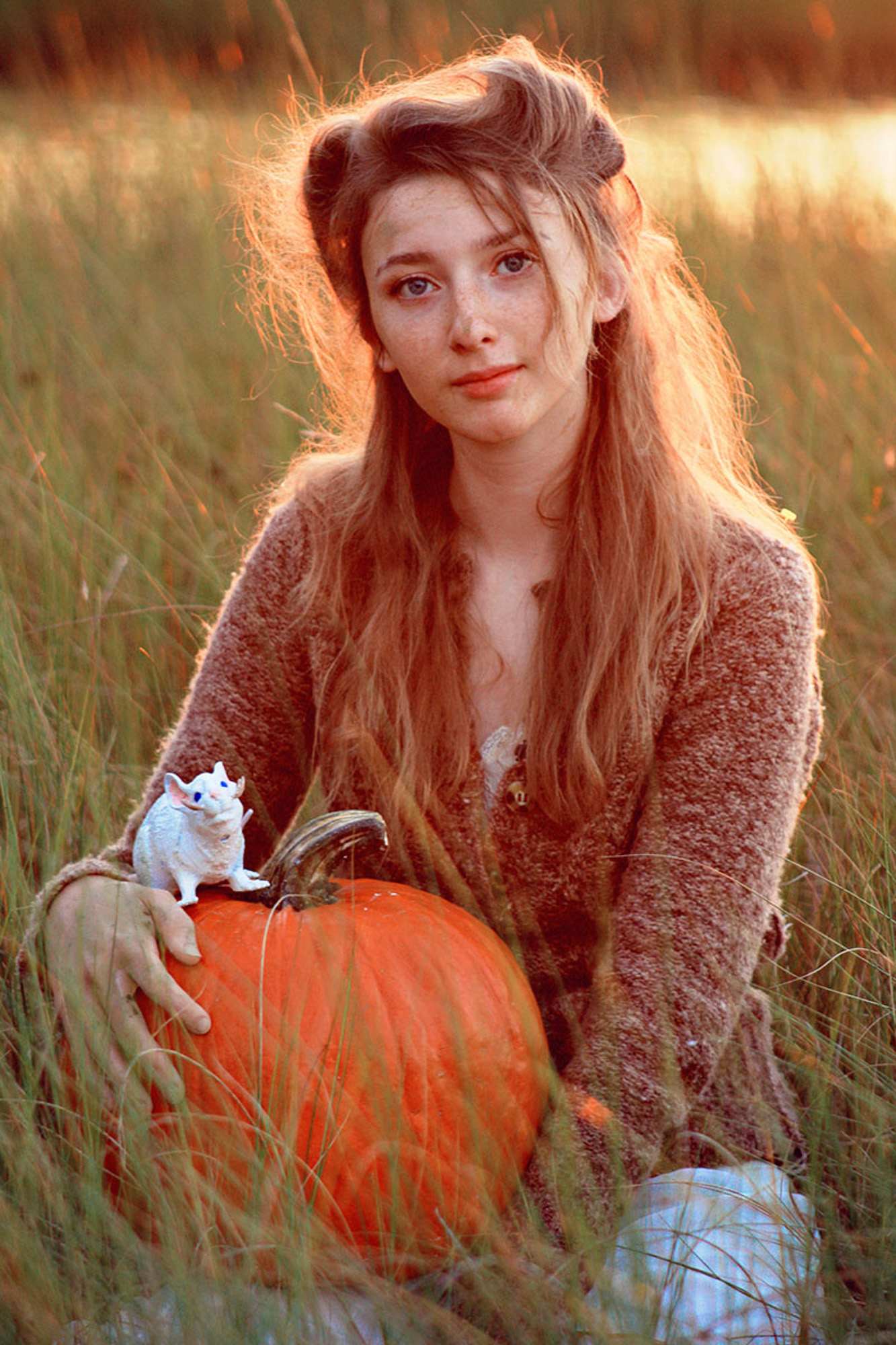 Cinderella in a field with pumpkin and mouse.jpg