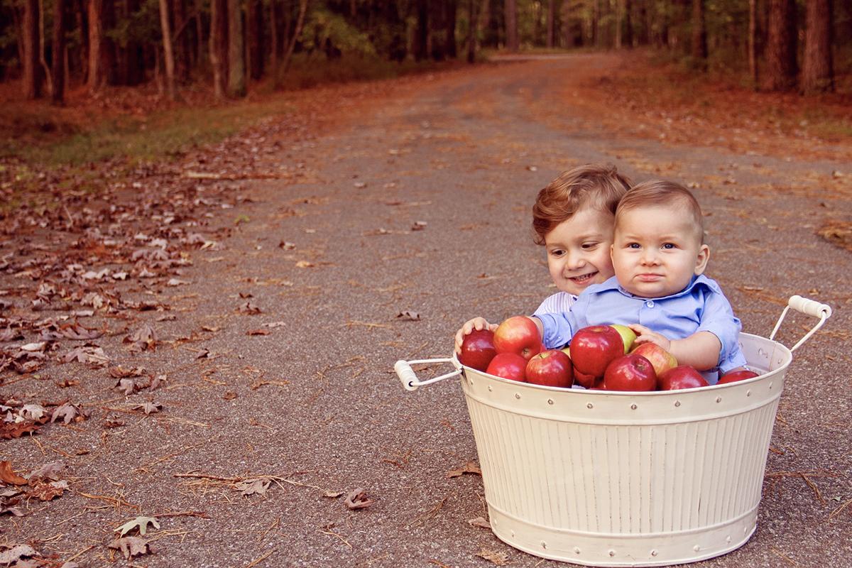 Boys in  a bucket of apples