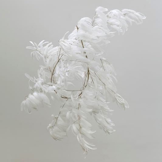 Dreamy feather sculptures by #gabrielorozco 🕊