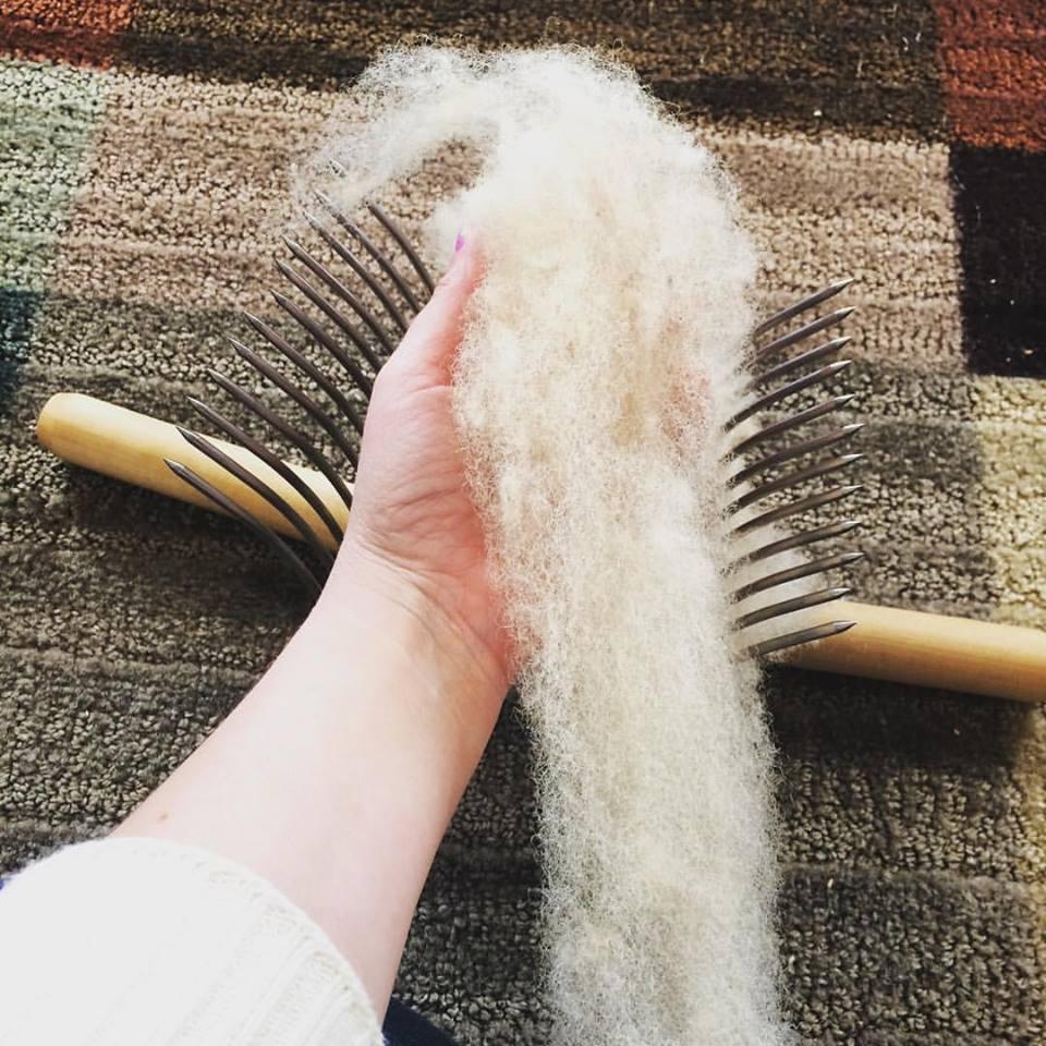wool combs two.jpg