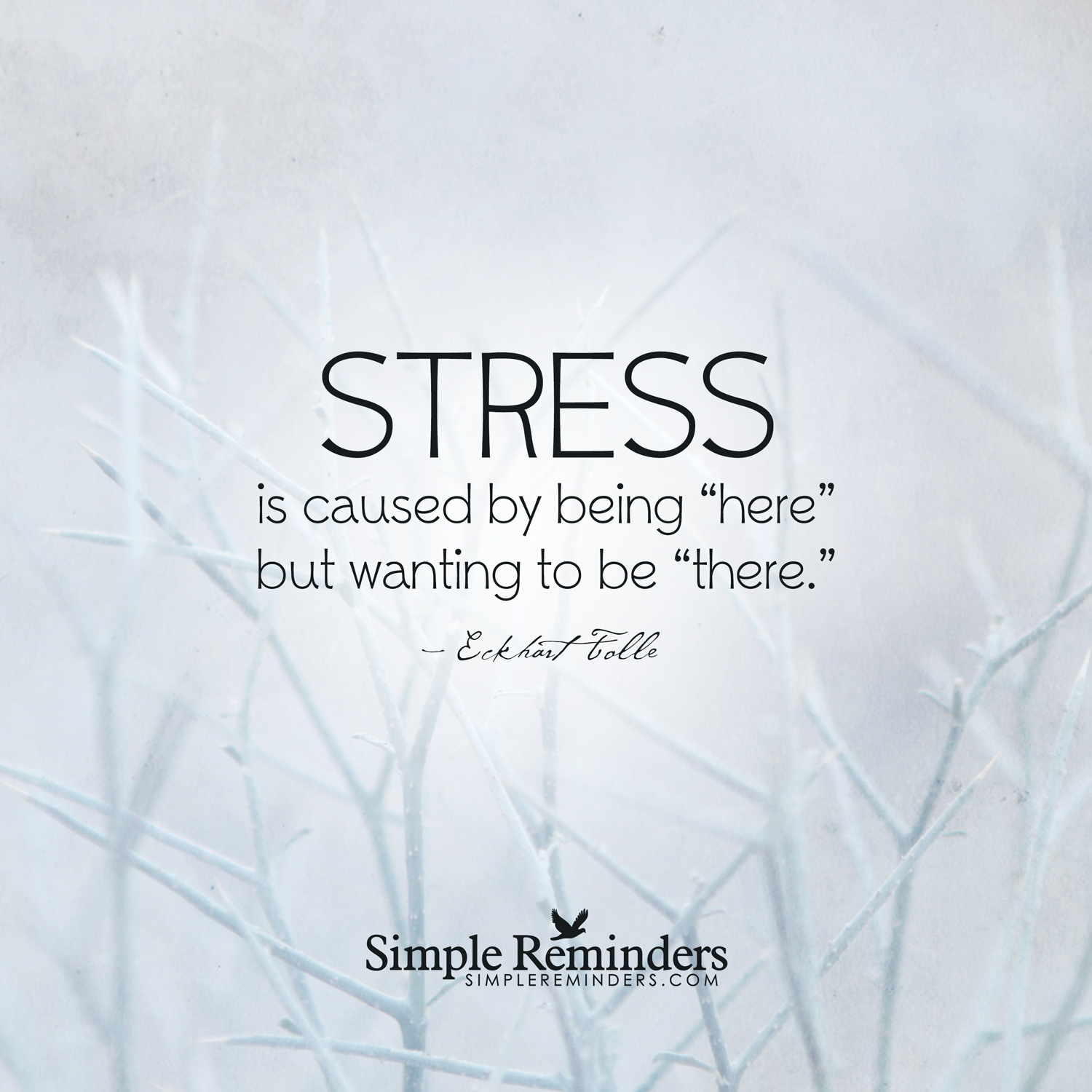 The basis of stress -- Eckhart Tolle