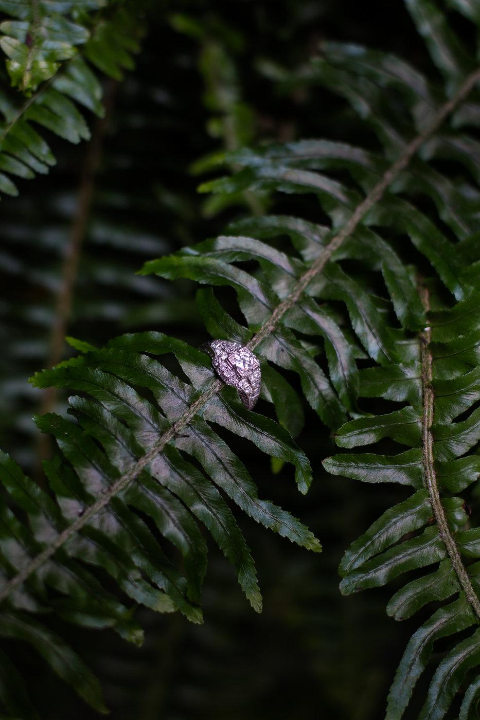 Modern Romantic Jungle Styled Shoot at The Woodshed-Bridal Shoot-0029 (1).jpg