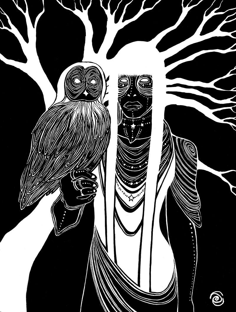 Night Owl Website.jpg