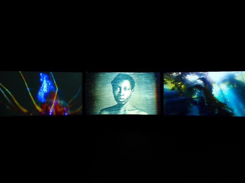 John Akomfrah,Vertigo Sea,2015 (still). Three-channel HD video installation, color, 7.1 sound; 48:30 min