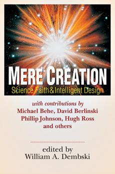04_MereCreation.jpg