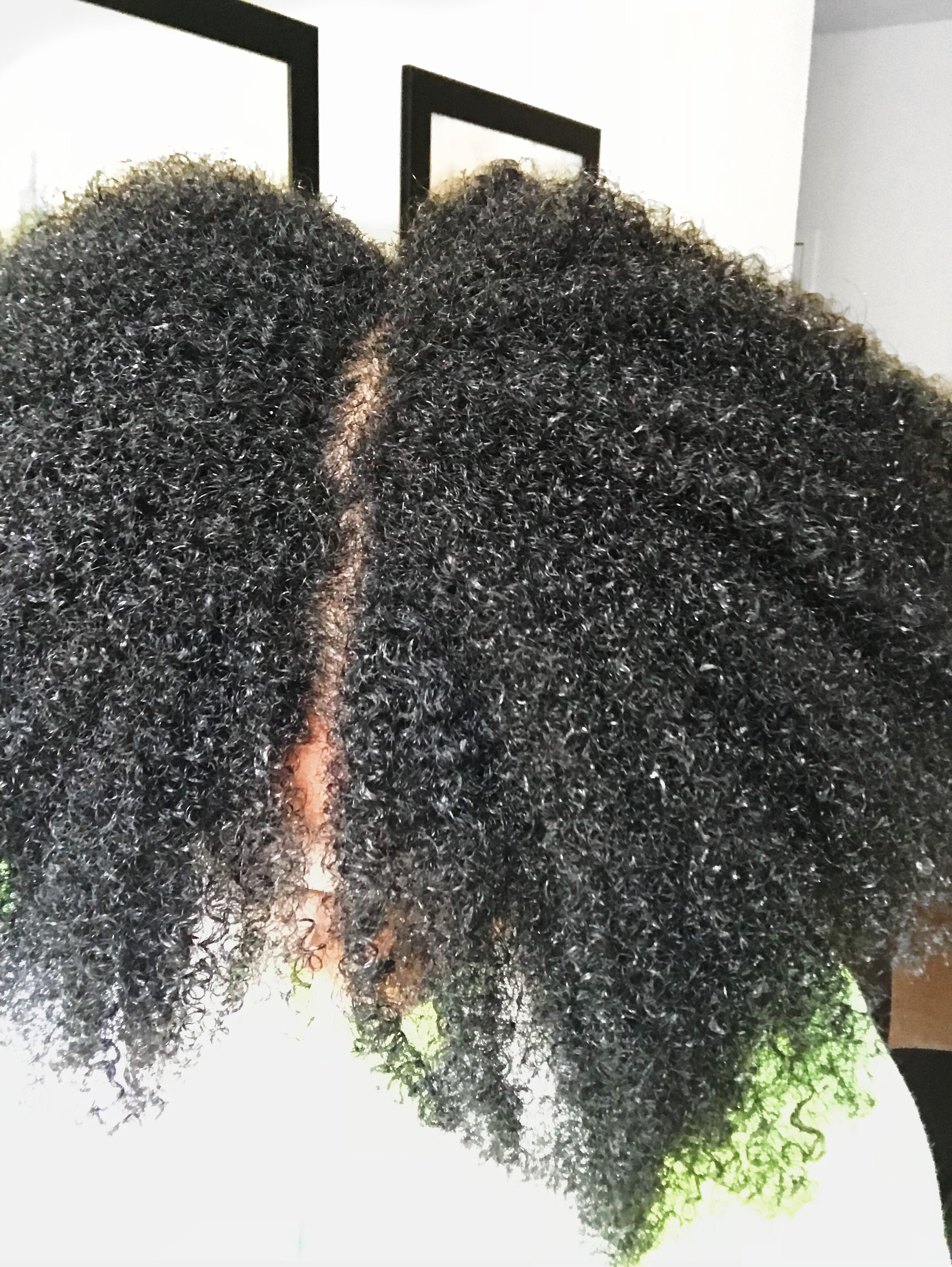Hair after rinsing the conditioner out