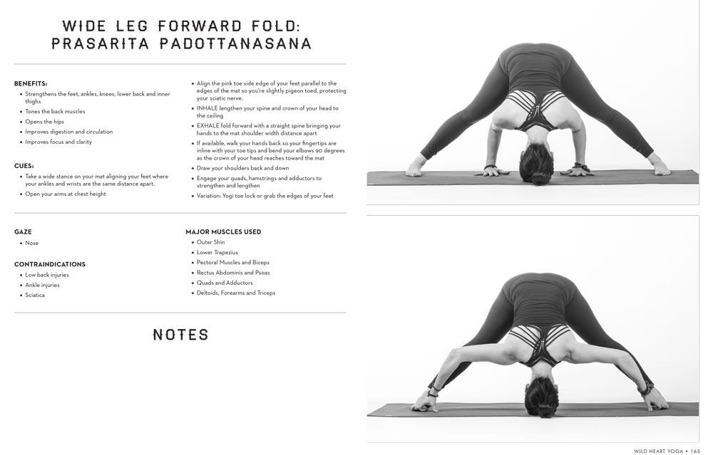 Wild-Heart-Yoga-Teacher-Training-Manual-by-Weston-Carls-2.jpg