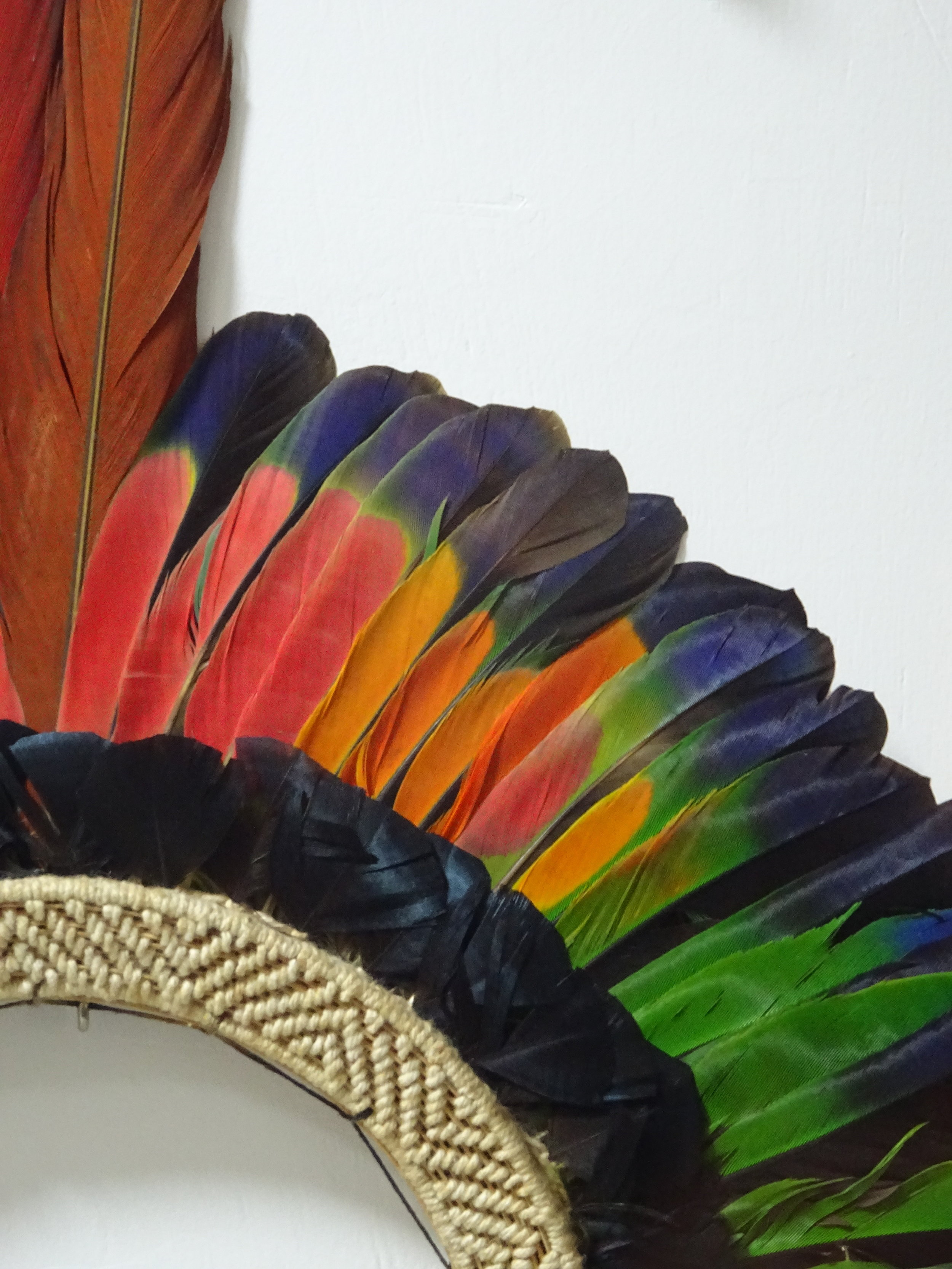 AMAZONIAN FEATHERED CEREMONIAL CROWN