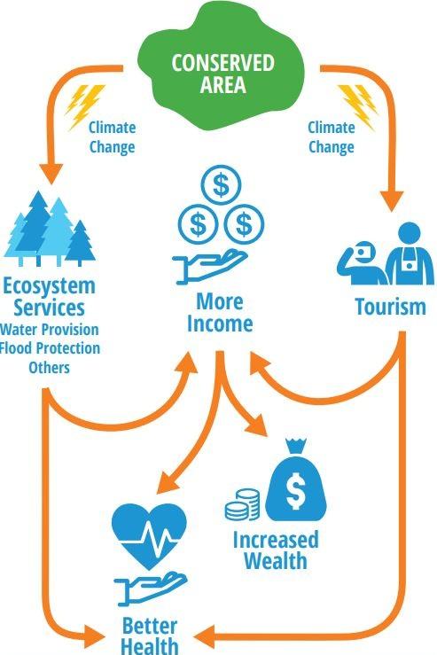 PA_Infographic.jpg