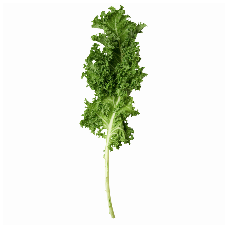 Kale Is One of the Most Contaminated Veggies - The 2019 Dirty Dozen and Clean Fifteen Lists
