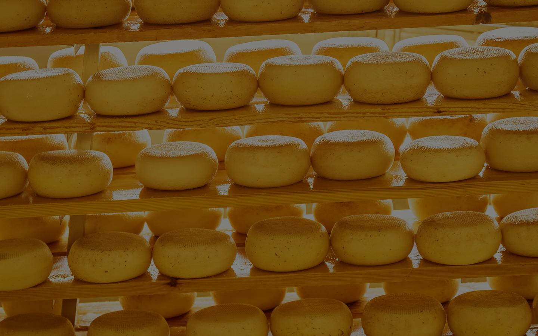Ariza Cheese Manufacturing