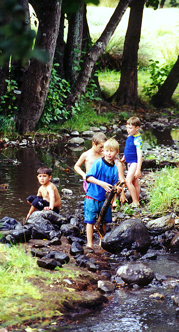 The stream is a nice, shady place for kids to explore