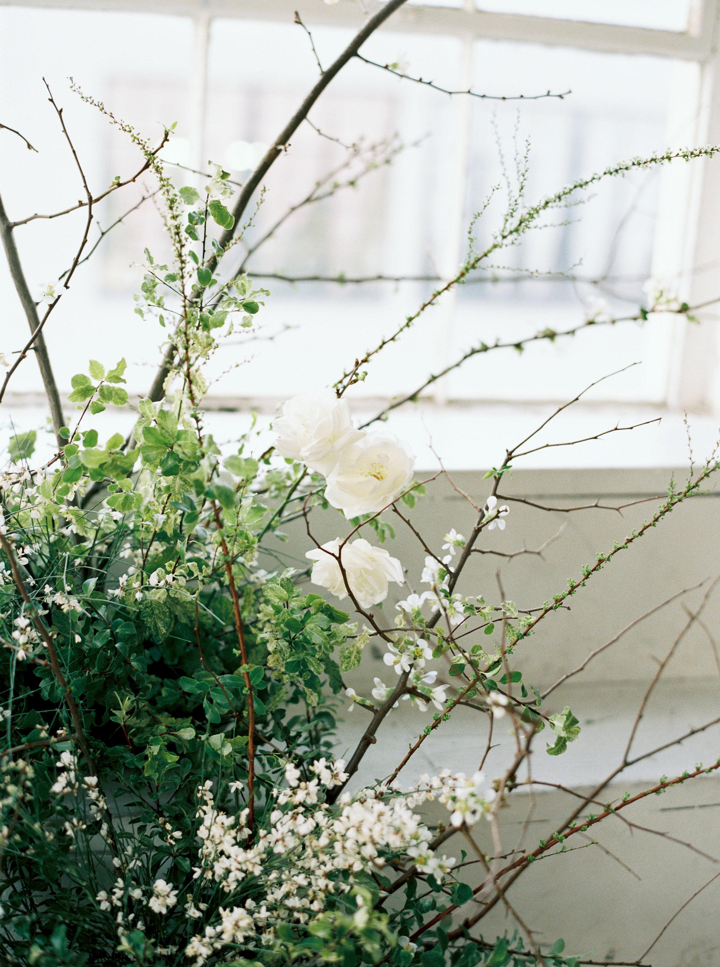 winterspringstyled-198.jpg