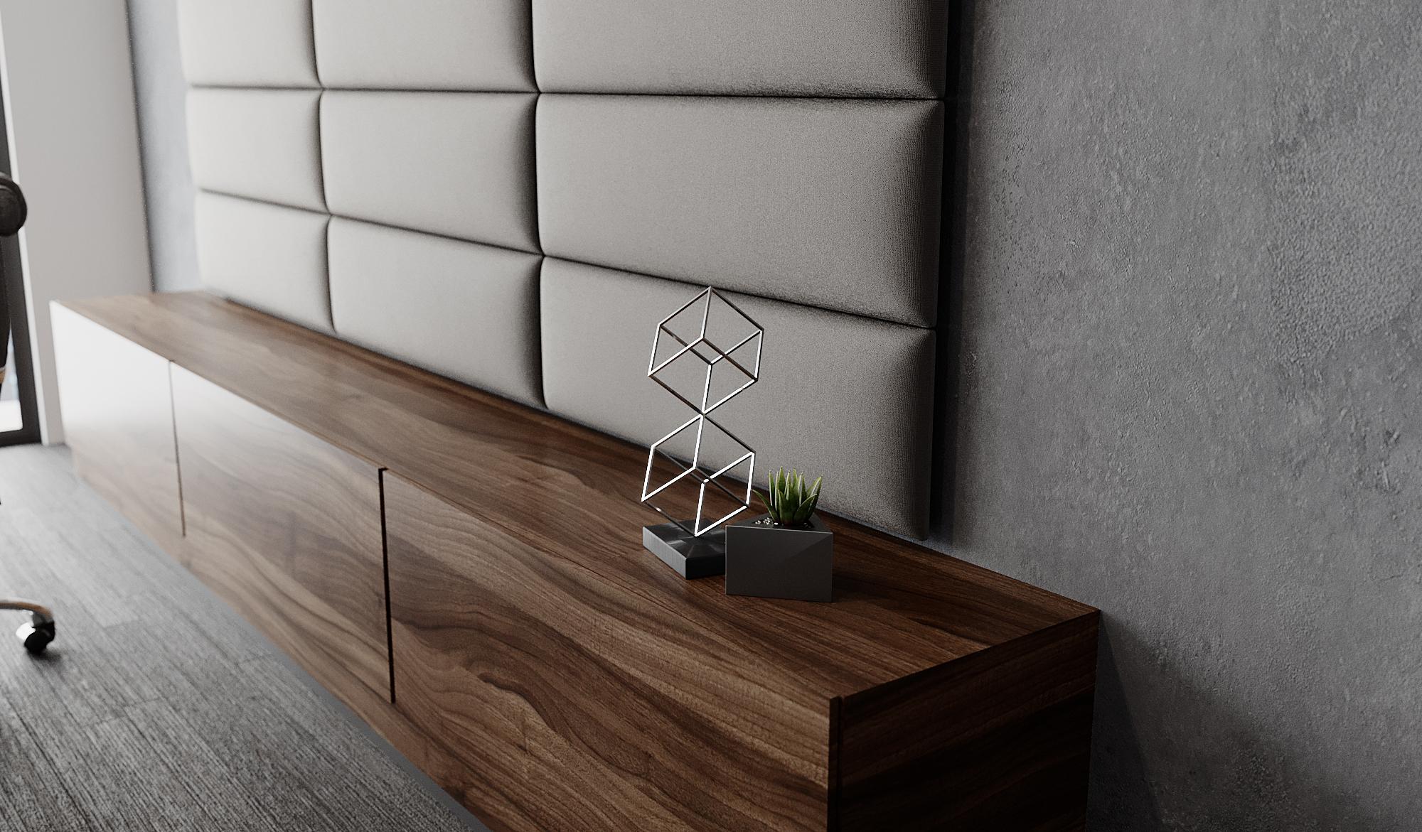 Modern Office - Panel & Plant.jpg
