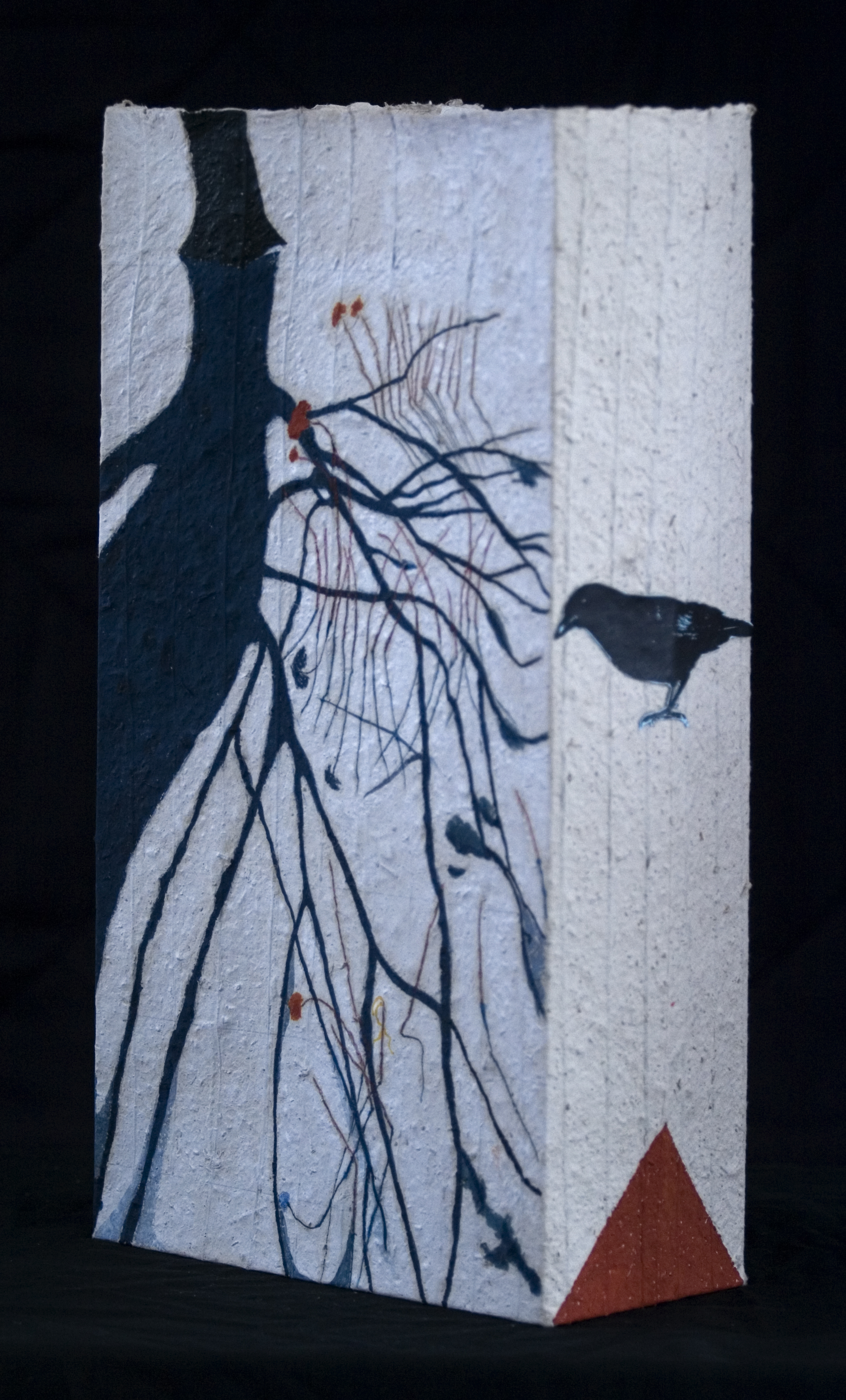 Crow in the Shadow