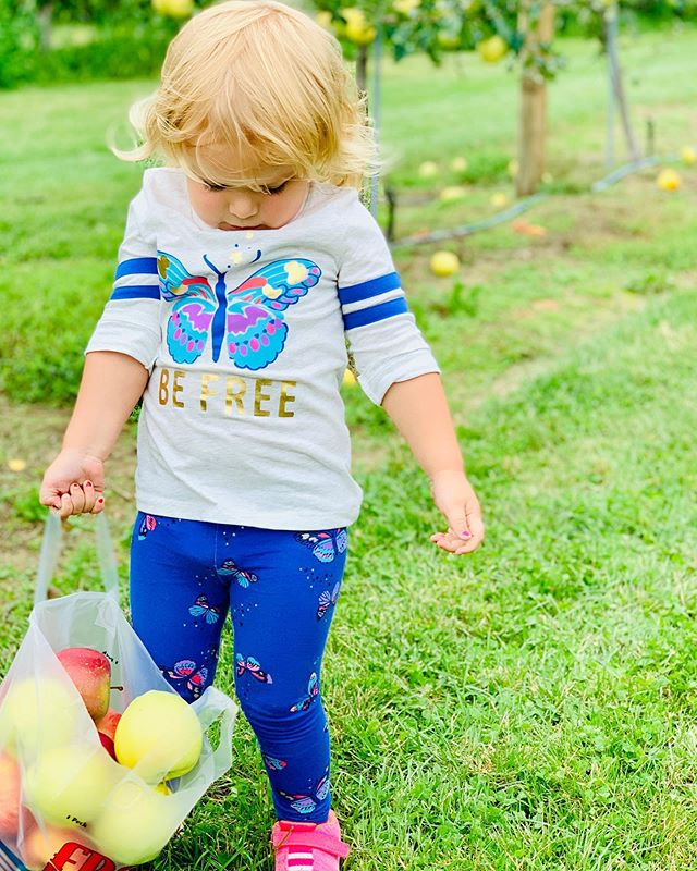 Even when your load is heavy, just hold on tight—and be free! (A little Monday motivation courtesy of my sweet little niece!) 🍎💚#toddlertips #monday #holdontight #befree #fall #applepicking #appledumpling #northfork #inspiration #wisebeyondheryears