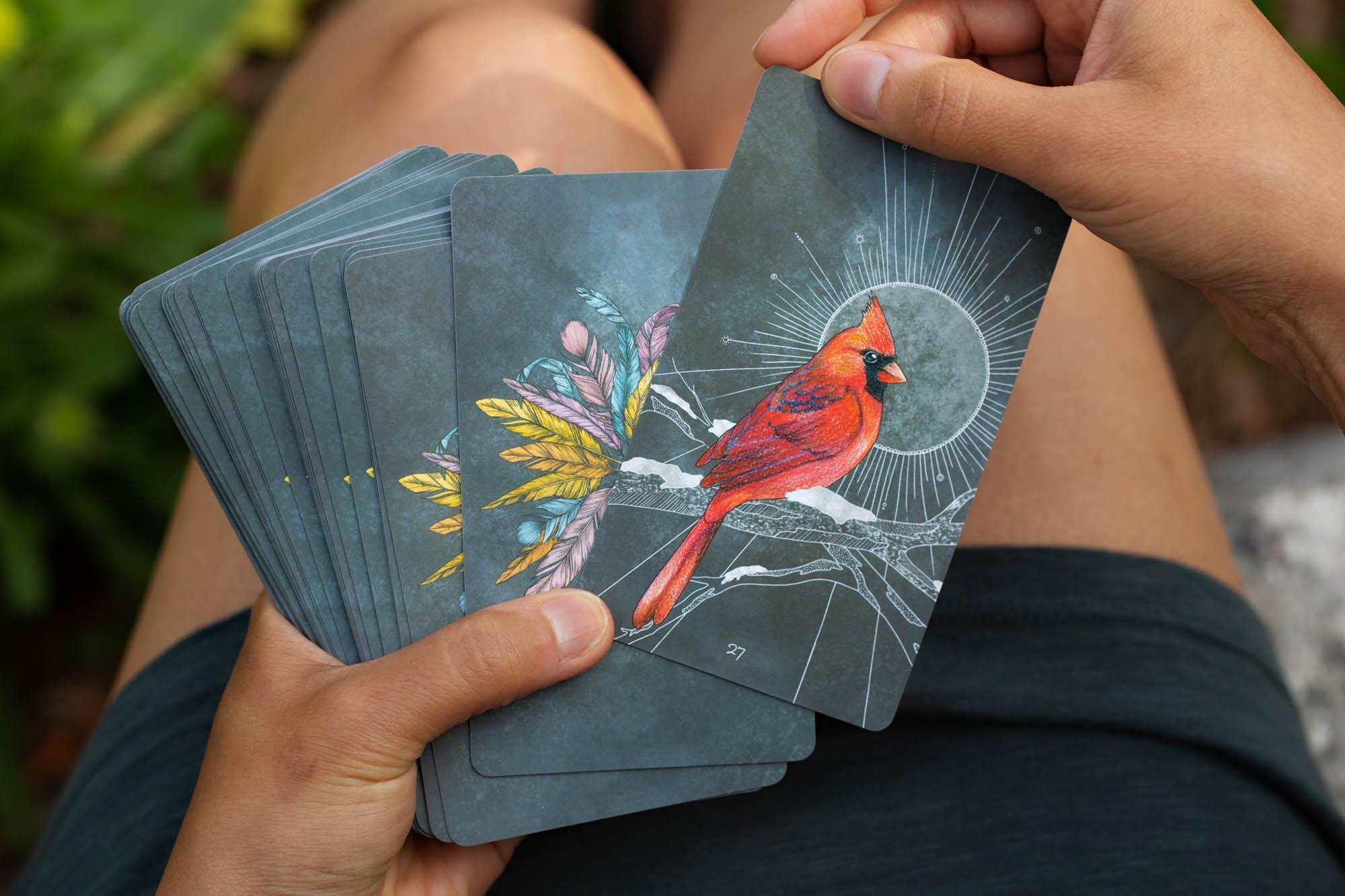 jbs-BirdsOracleDeck_04.jpg
