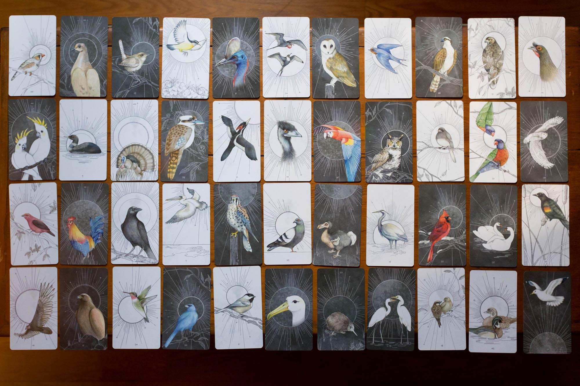 jbs-BirdsOracleDeck_24.jpg