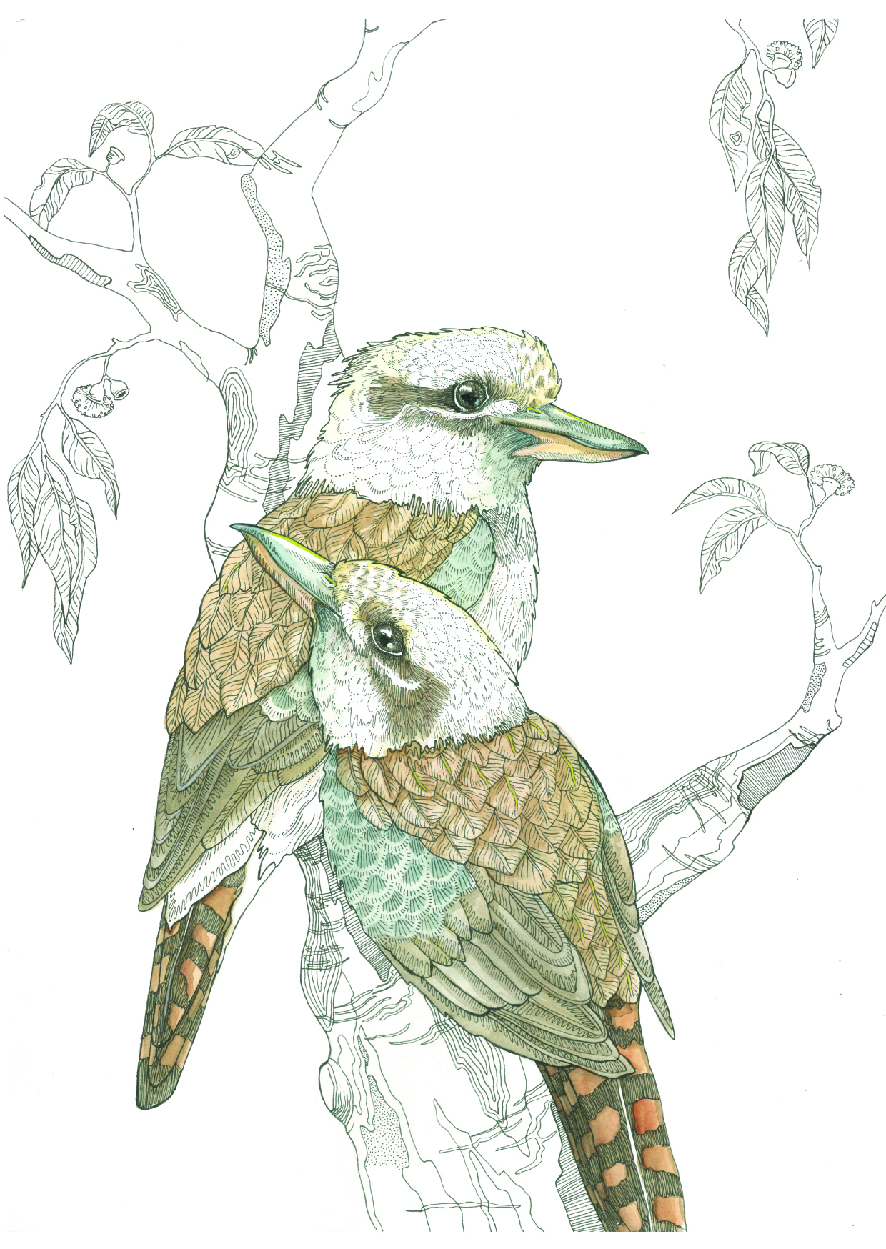 Two Kookaburras 2016 Watercolour and Ink on 100% cotton paper
