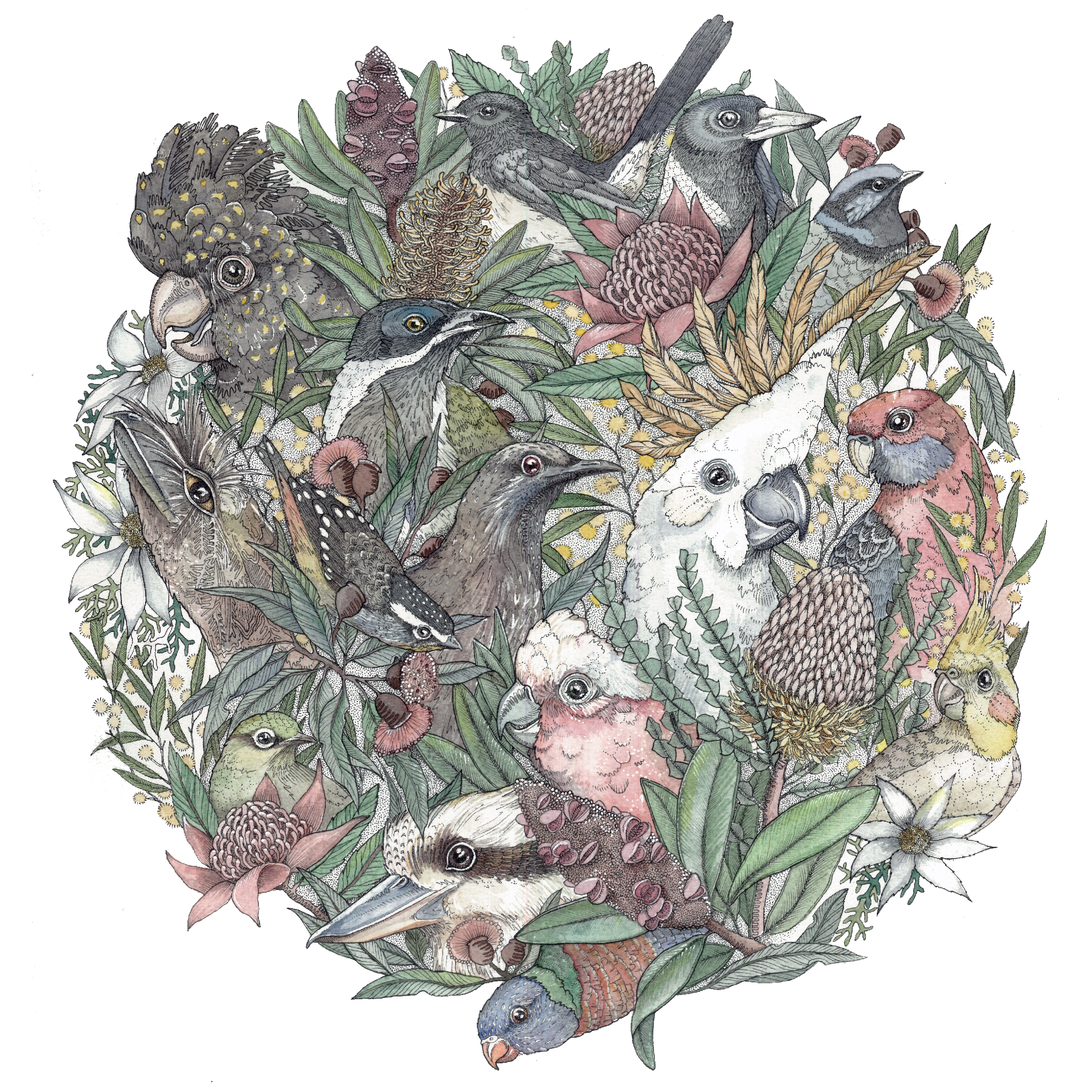 Bird Bouquet for print.png