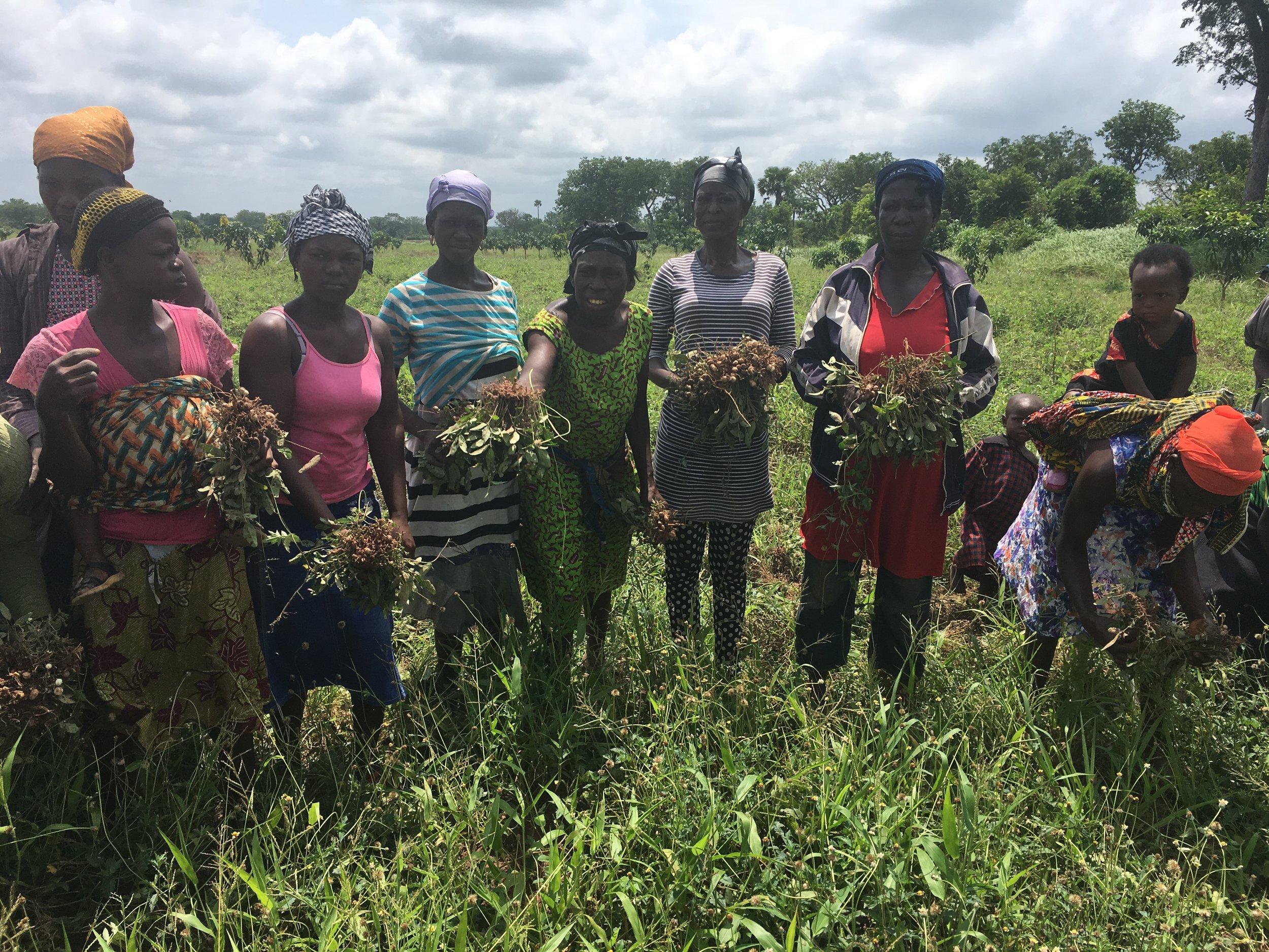 women farmers in aframplains 2.JPG