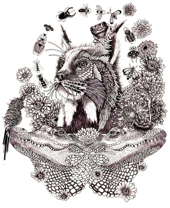 A Bobcat Goldbloom – Elizabeth MD Vuong, 2014