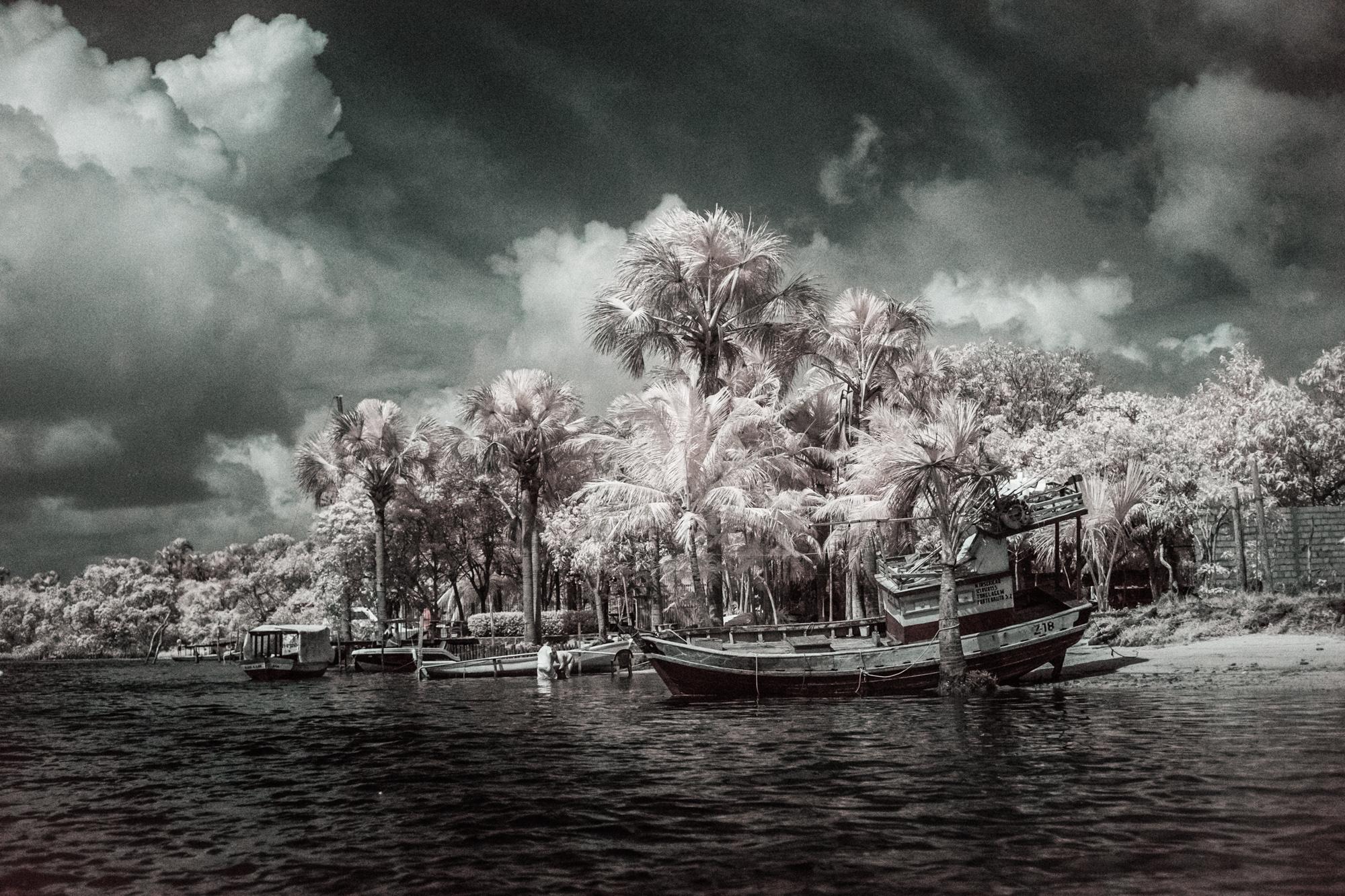 Scott_Myers_Brazil_Infrared--3.jpg