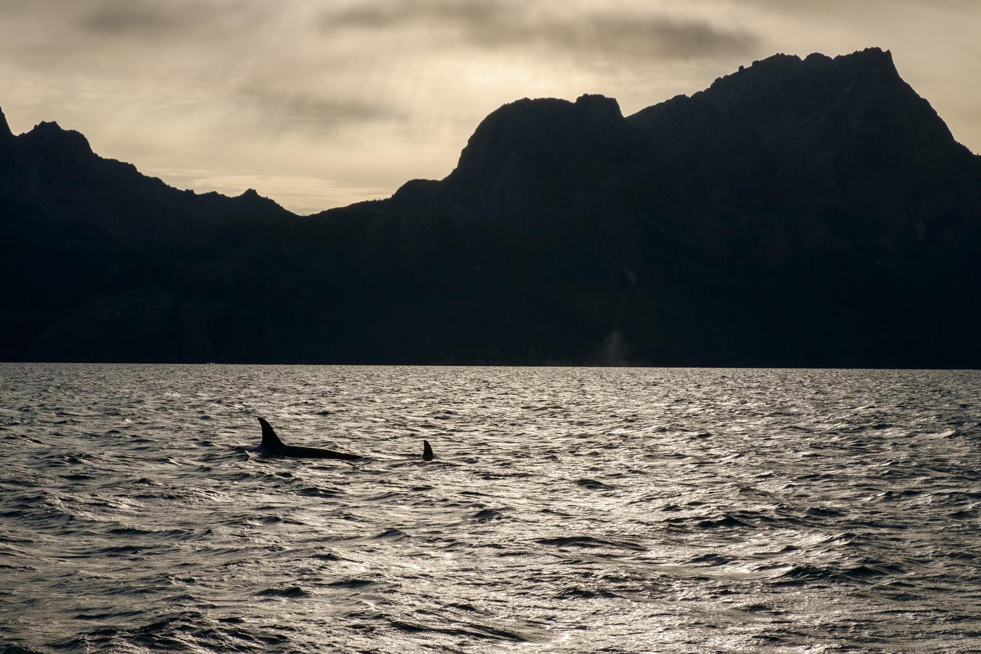 Scott_Myers_Alaska-4038.jpg