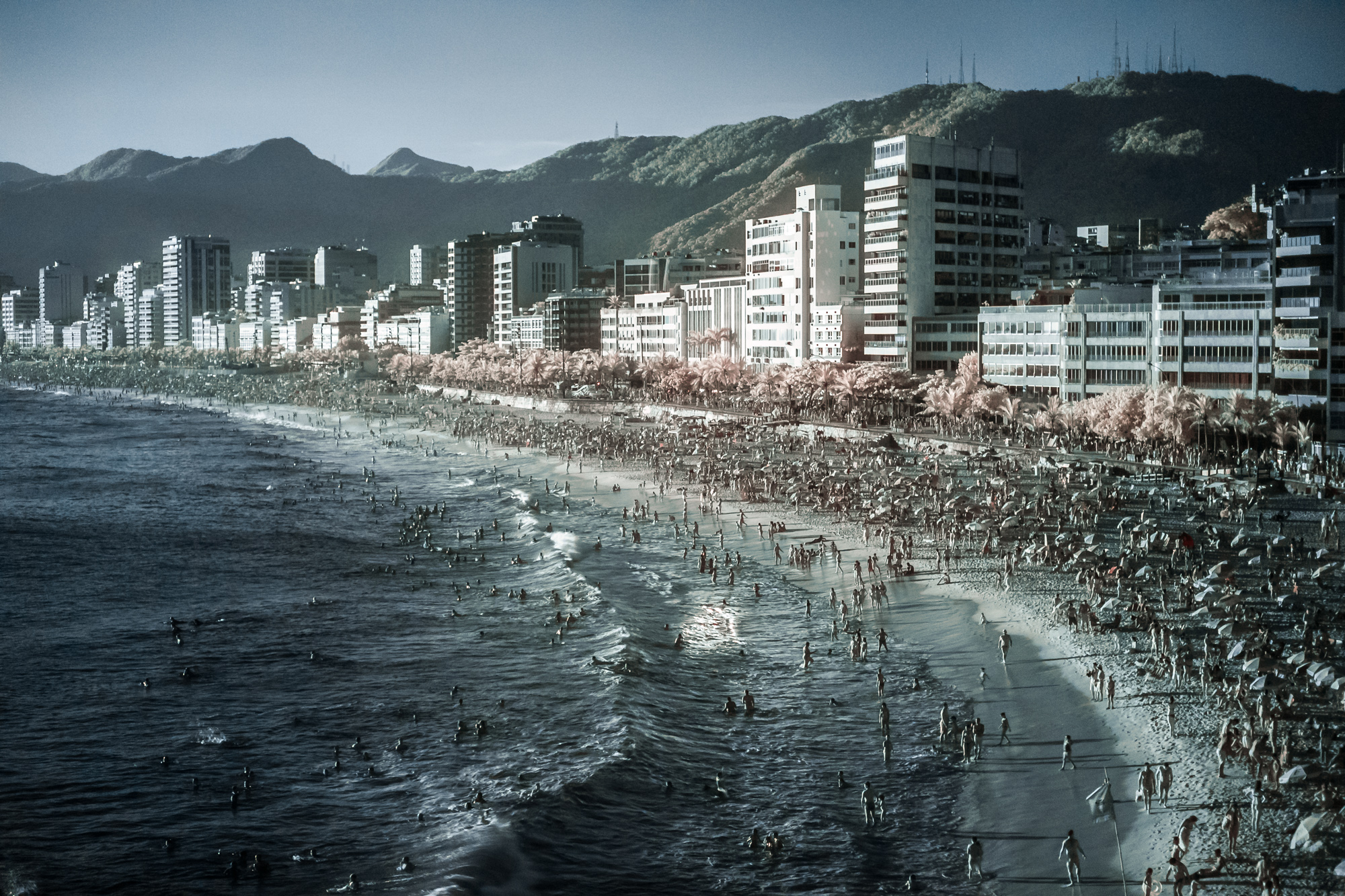 Scott_Myers_Brazil_Infrared--4.jpg