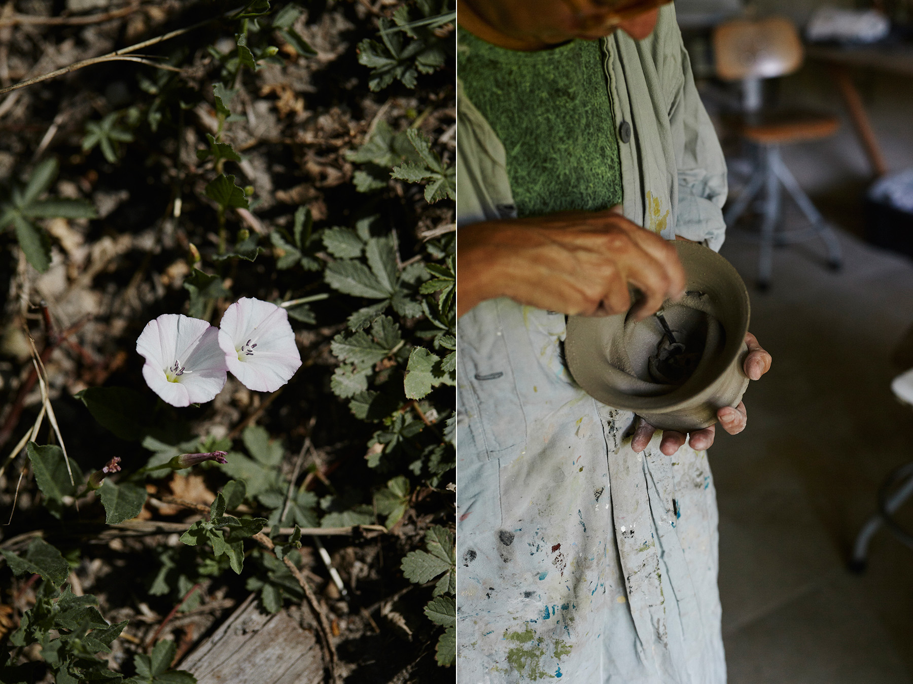LEFT:  Convolvulus arvensis or  Liseron des champs  (Field bindweed). RIGHT: Cécile determines the structure of the future floral composition when creating the vase.