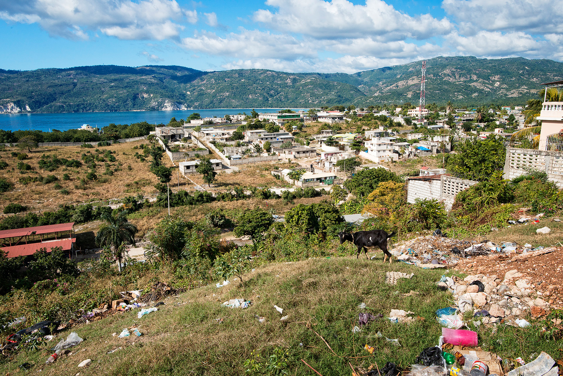 160110_Felician_Haiti_4163.jpg