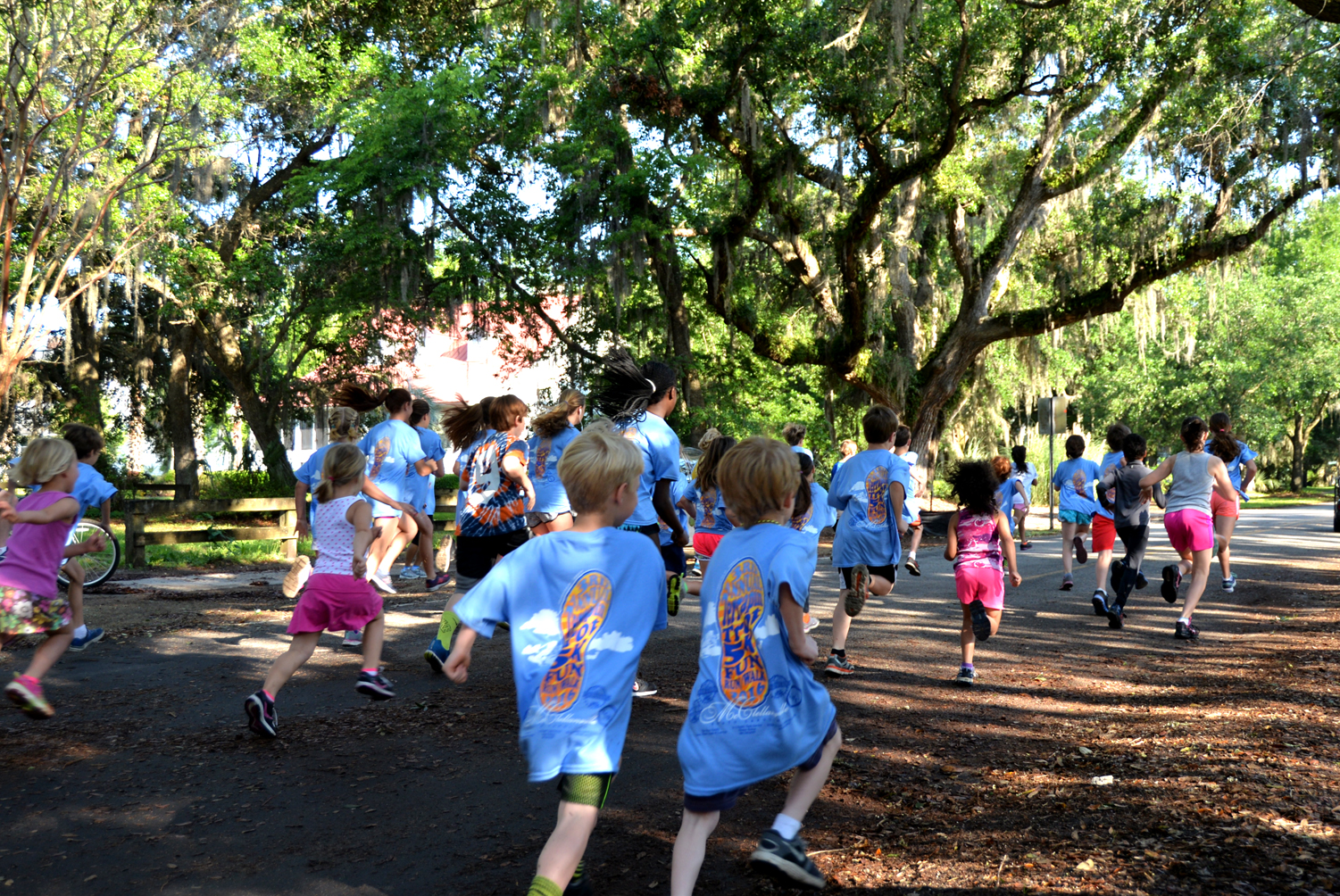 Running at the Terrapin trot