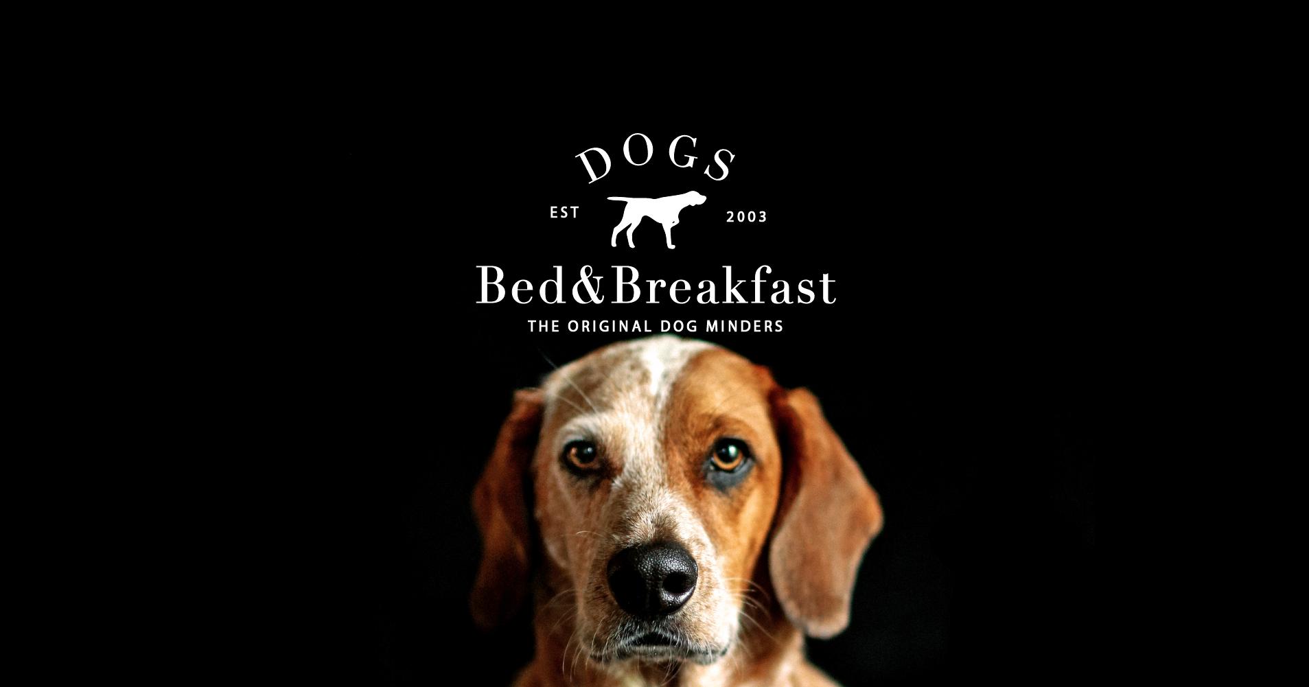 Dogs Bed & Breakfast 2017