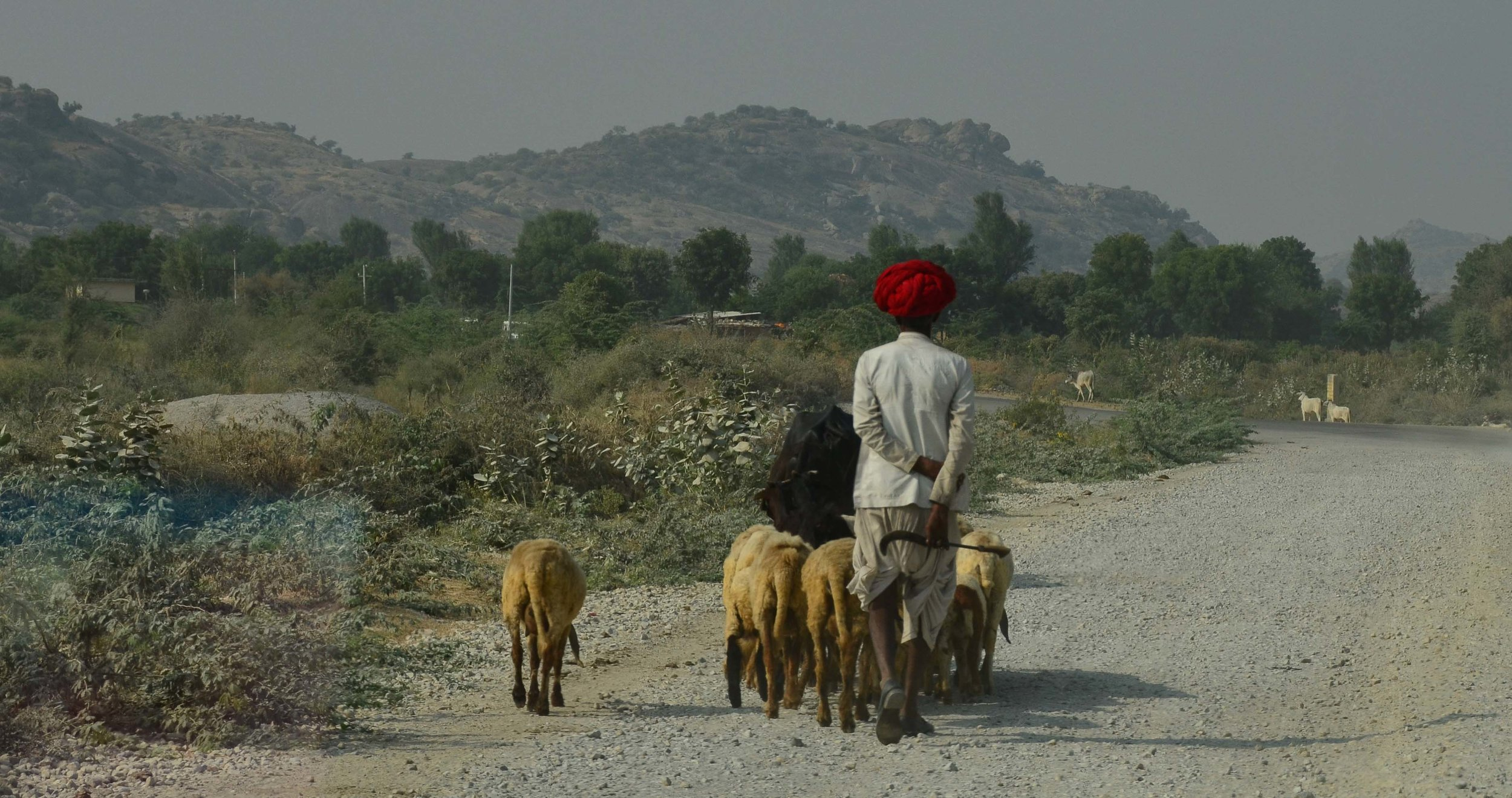Jodhpur, India 2012