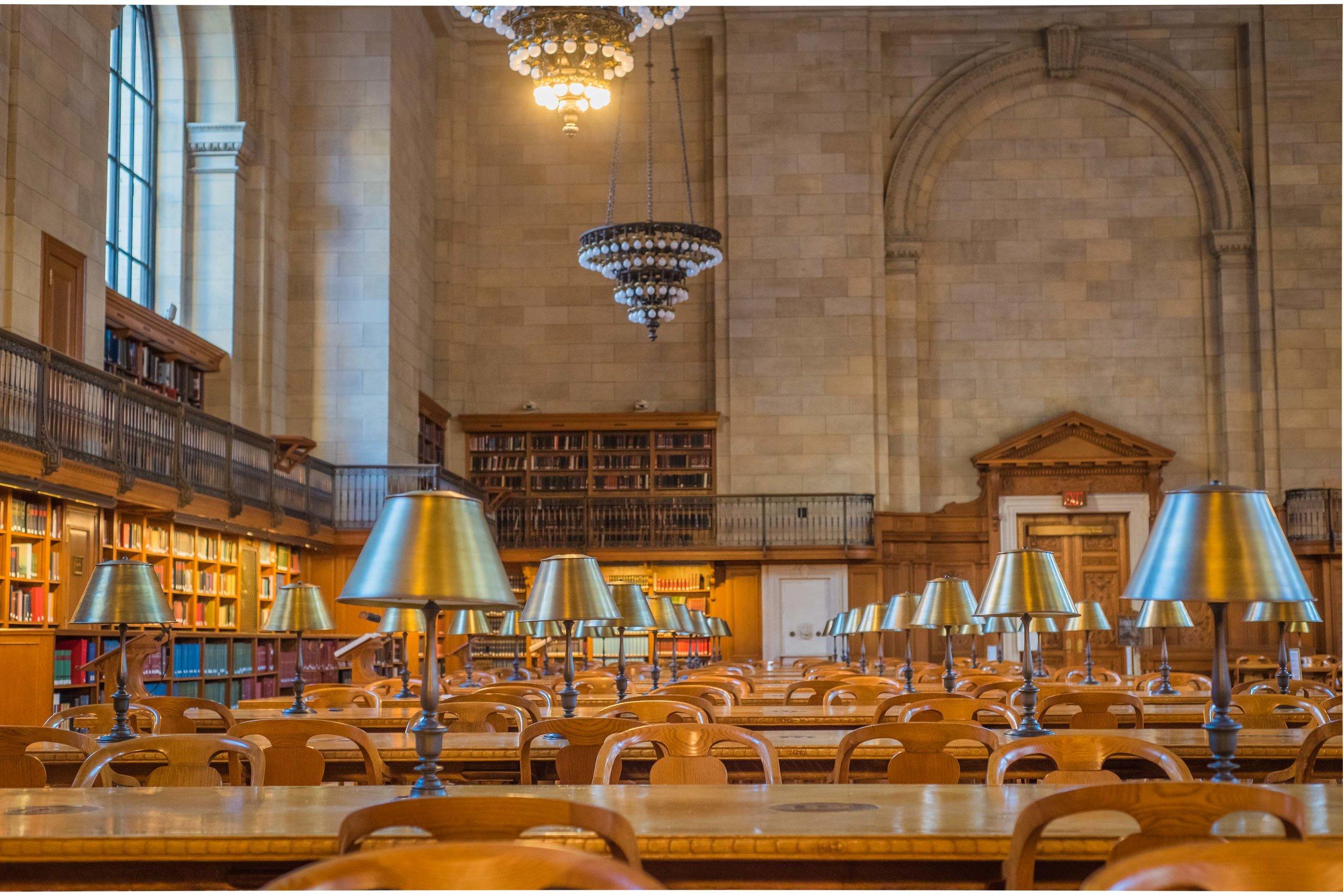 NY Public Library. Manhattan, NY 2017