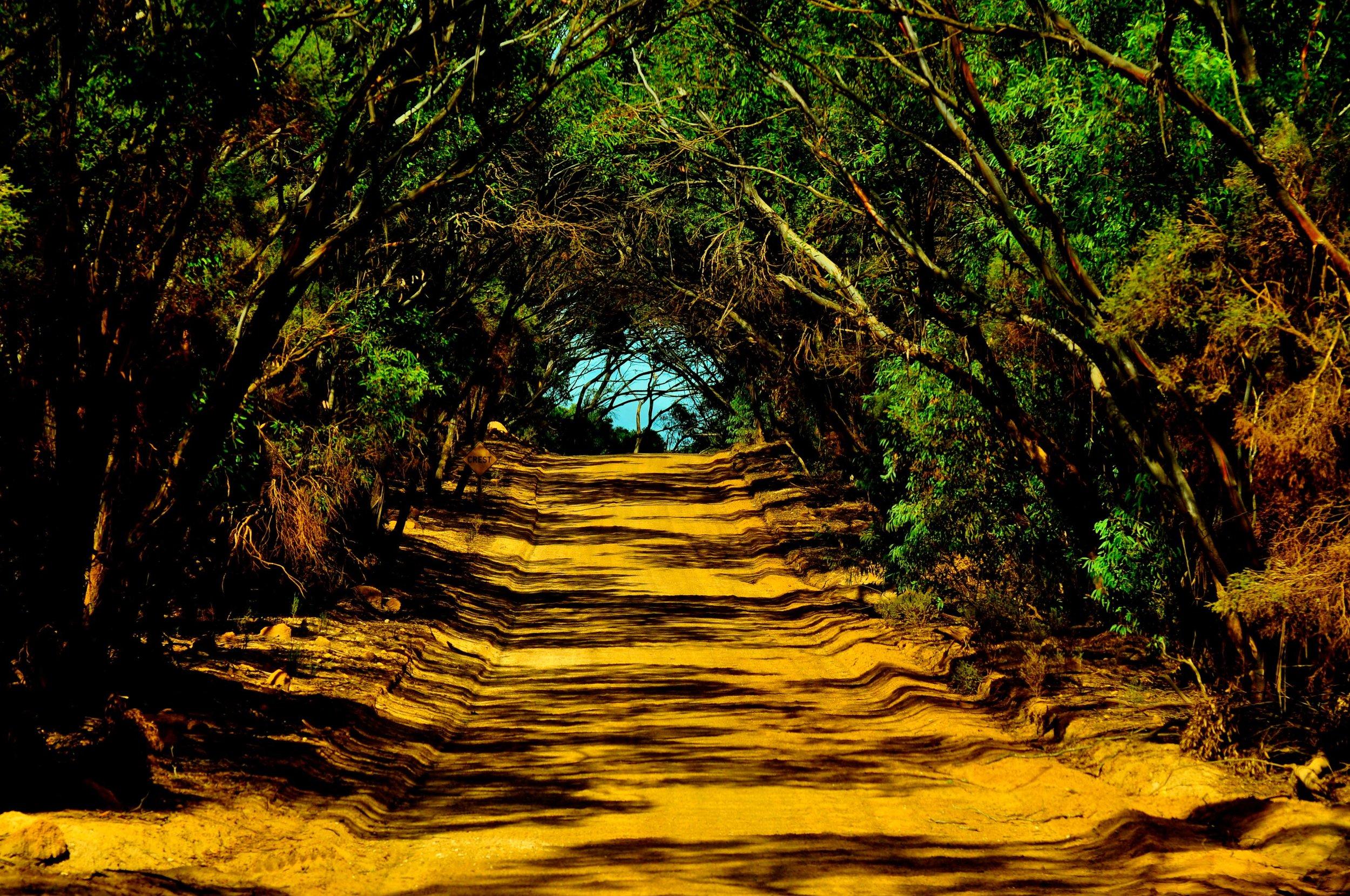 Kangaroo Island, Australia 2011