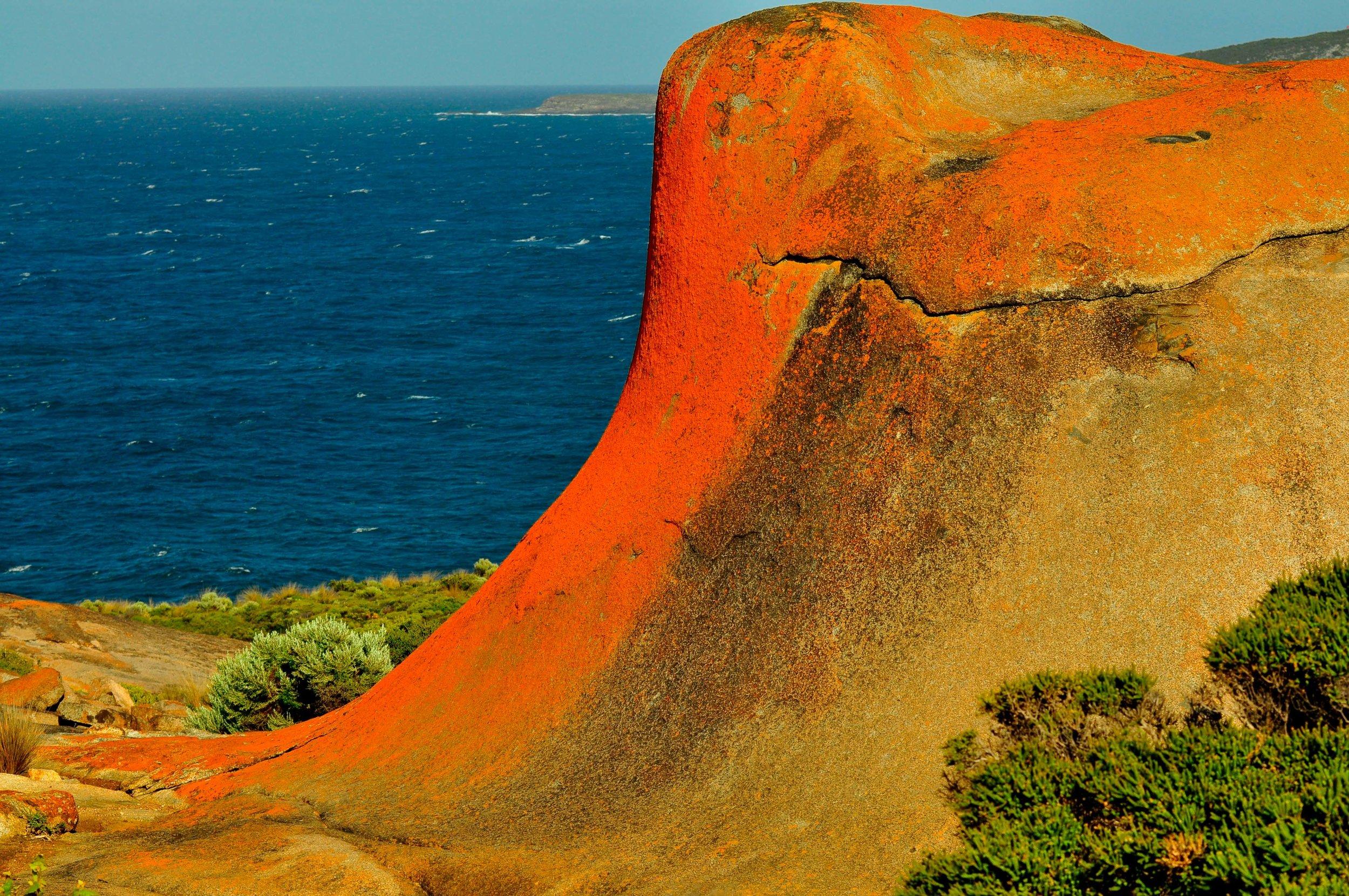 Flinders Chase National Park. Kangaroo Island, Australia 2010
