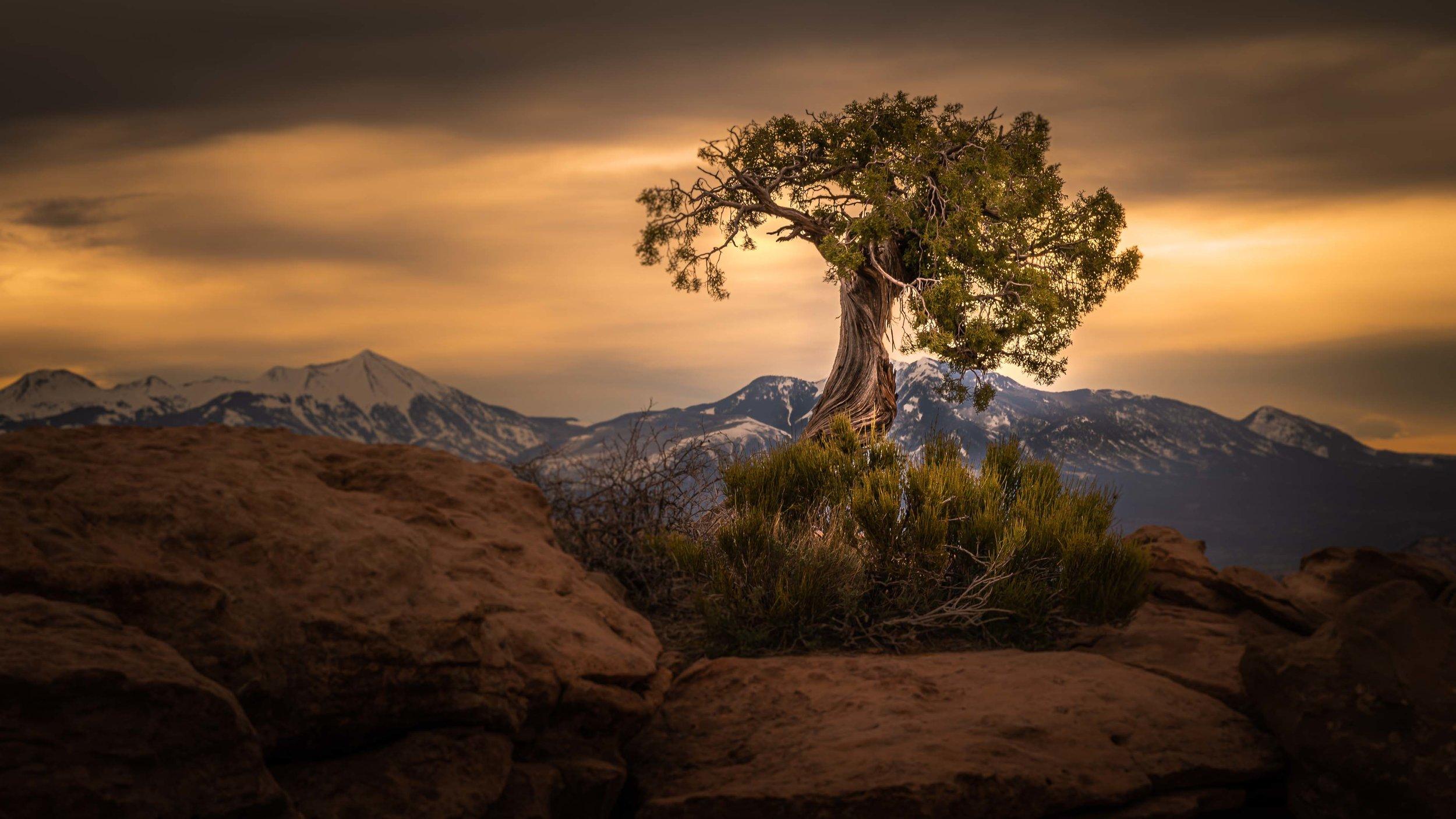 Moab, Utah 2019-4