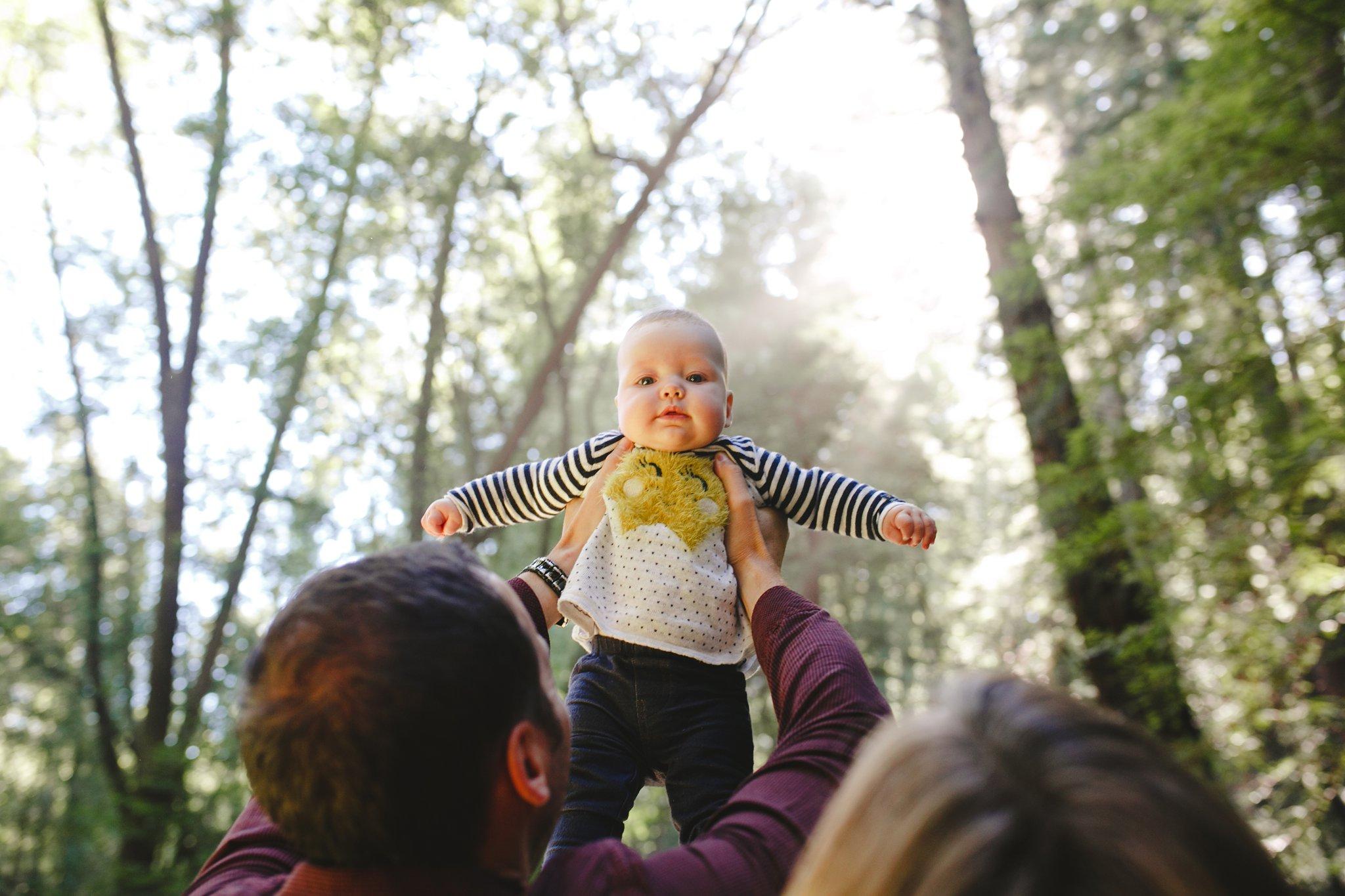 Fairfax Redwoods family photo shoot